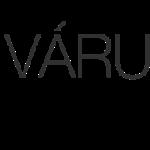 vcs_wp_logo-544