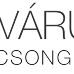vcs_wp_logo_544